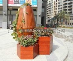 廣場木花盆