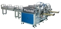 Handkerchiefs Packaging Machine EFST-01