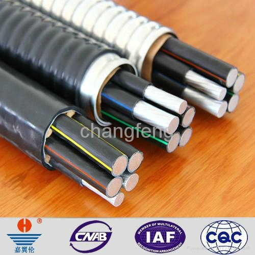 YJLHV(TC90)非鎧裝鋁合金電纜 3