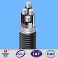 YJLHV(TC90)非鎧裝鋁合金電纜 5