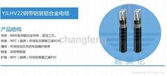 YJLHV22鋼帶鎧裝鋁合金電纜