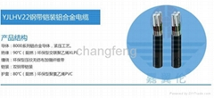 YJHLV22 XLPE insulated PVC sheathed power cable