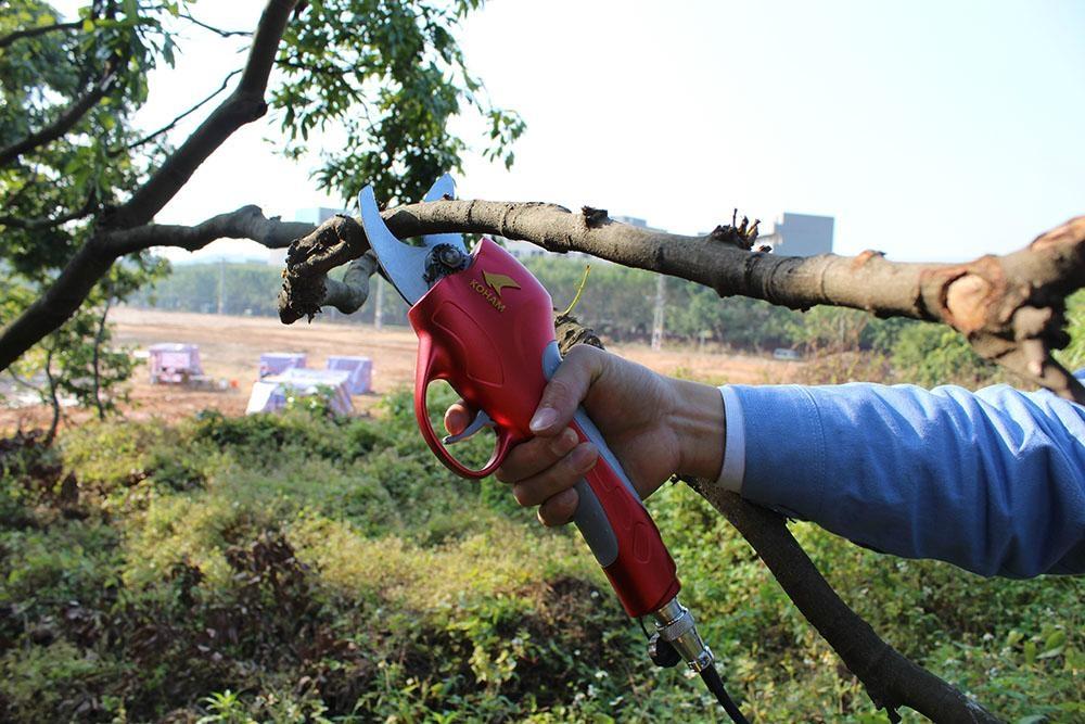 Electric Pruning Shears Hand Pruner Koham Lh Ma China