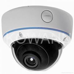Vandalproof 720P IP Dome Camera