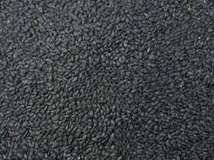sell high quality sesame seeds