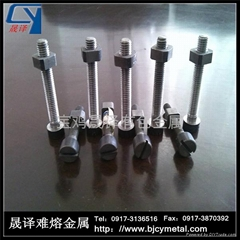 Molybdenum bolt and nut