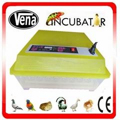 VA-48 Newest Best price Transparent chicken egg incubator for sale