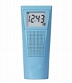Bathroom Clock Radio