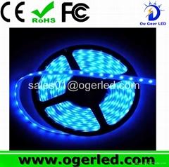 60LED/M 3528&5050 Flexible LED Strip For Decoration