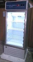 Upright Medical Refrigerator