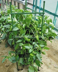 plastic coated steel pipe tomato cage support