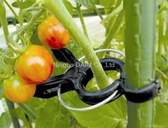 tomato stem supporter