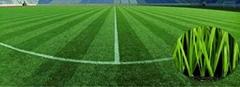 Sports Stadium Artificial Grass