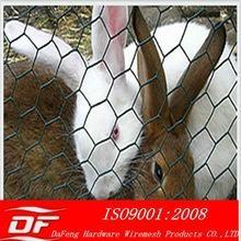 galvanized hexagonal wire mesh for animal