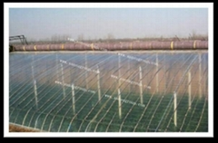 high quality coating type greenhouse mulching film for sale