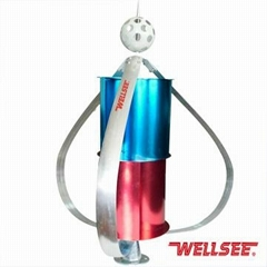Factory price WS-WT 300W Wellsee squirrel-cage wind turbine