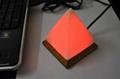Himalayan USB Salt Lamps 5