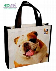 non woven laminated promotional bag
