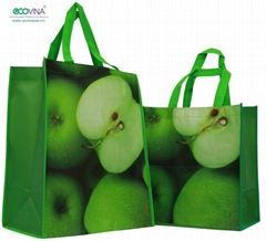 2014 hot sales pp non woven laminated promotional bag
