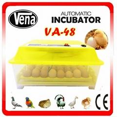 Professional mini incubators for hatching eggs