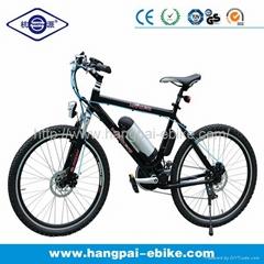 36V 8ah 350W En15194 Nice Look Electric Mountain Bike (HP-E010)
