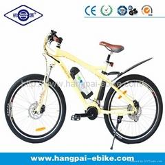 36V 8ah 250W Electric Bike (HP-E003)