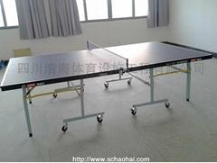 红双喜室内移动折叠式乒乓球台