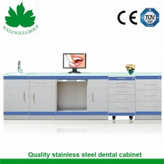 SSC-01 Stainless Steel Antique Medicine Cabinet with Blue Strip