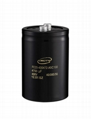 Aluminum Electrolytic Capacitors (FE20400682M6C090)