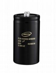 Aluminum Electrolytic Capacitors (FE20400332M5B0S1)