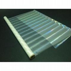 Transparent Holographic Foil