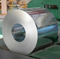 ga  anized steel sheet