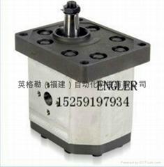 欧洲液压齿轮泵