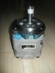 日本原裝現貨NACHI不二越油泵IPH-3B-10-20