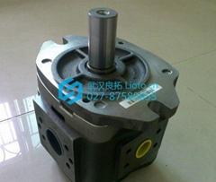 原装德国福伊特Voith齿轮泵IPV3-3.5-101