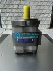 德国进口福伊特Voith油泵IPV3-5-101