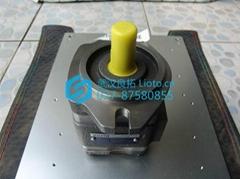 德国原装福伊特Voith齿轮泵IPV3-6.3-101