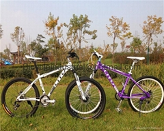 DHL Free shipping 2014 new cool mtb with disc brake fork suspension