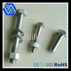 Carbon steel high quality hex head bolt  DIN931