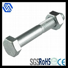 Staineless Steel Hex Bolt and Nut