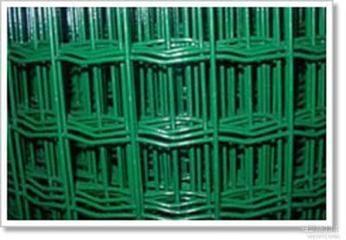 pvc镀锌电焊网 1
