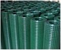 pvc镀锌电焊网 2