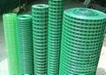 pvc镀锌电焊网 3