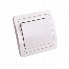 flush 1 gang wall switch