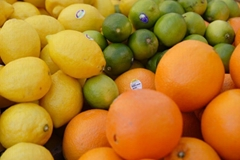 We are the biggest suppliers of fresh fruits