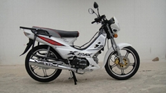 hot sale 110cc Cub Motorcycle 110cc Forza Moto