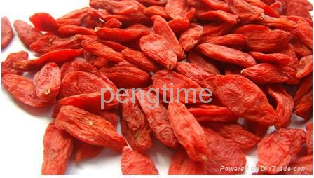 Organic DRIED goji berry 2