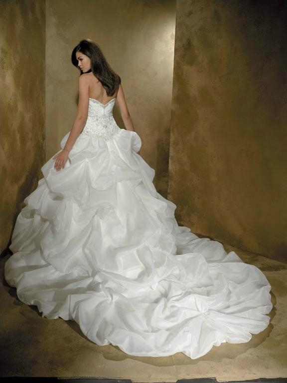 Strapless embroidered bodice picked up skirt chapel wedding dress for tall slim  2
