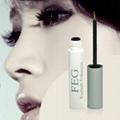 Why purchasing the FEG eyelash growth cream from us 5