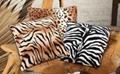 Coral Fleece Blanket 2